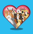 group of dog breeds with heart vector image vector image