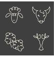 One line zodiac symbols set vector image vector image