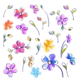 Set of isolated watercolor flowers vector image vector image