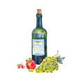 still life with a bottle wine grapes and apple vector image