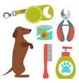 dachshund dog playing elements vector image