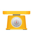 domestic weigh scales flat vector image