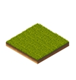 Grass Isometric vector image