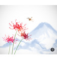 red chrysanthemum flowers dragonfly and blue vector image vector image