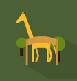 zoo icon set of great flat icons with style long vector image