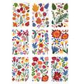 collection floral patterns set bright colorful vector image vector image