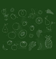 drawing fruits vegetables and on a green vector image vector image
