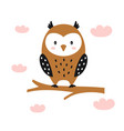 funny owl on white background cute animals vector image