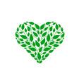 heart green leaf vector image vector image