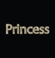 Princess word gold letters vector image vector image