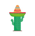 cactus wearing hat culture mexico icon vector image