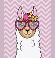 cute llama with sunglasses vector image
