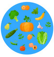 health food icons in a flat style vector image vector image