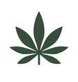 marijuana or cannabis leaf icon logo vector image