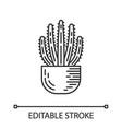 organ pipe cactus in pot linear icon vector image