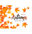 beautiful autumn leaves background template vector image