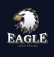 hawk eagle head usa americs logo mascot 11 vector image vector image