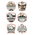 hunting club vintage badge with bird and animal vector image