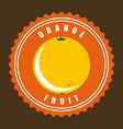 orange design vector image vector image