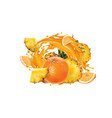 pineapples and oranges in a juice splash vector image vector image