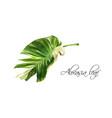 realistic image of alocasia tropic leaf vector image