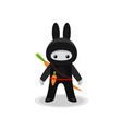 standing cute bunny ninja with carrot isolated vector image vector image