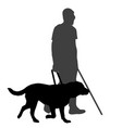 blind man with cane and guide dog vector image