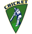 cricket sports batsman batting shield vector image vector image