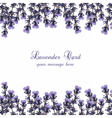 Lavender Card decorated Border vector image vector image