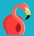 portrait a flamingo vector image