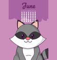 raccoon cute calendar cartoon vector image