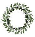 template round frame from olive branches vector image