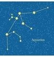 Aquarius Zodiac Sign Symbol Horoscope vector image