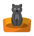 cat animal pet in the bed vector image