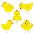 Cute yellow chicks vector image