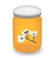 manuka honey and a brunch of manuka blooming vector image vector image