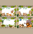 set wild animals nature frame vector image vector image