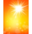 Summer sun burst with lens flare EPS 10 vector image vector image