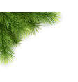 artificial christmas tree branch white vector image vector image