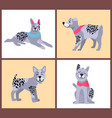 dog with different poses on vector image vector image