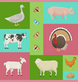 farm life with animals banner vector image