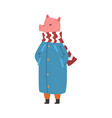 pig wearing warm winter clothes female humanized vector image vector image