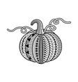 pumpkin coloring book vector image