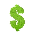 Dollar sign consisting of green leaves vector image vector image
