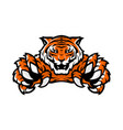 orange tiger sport gaming logo template vector image
