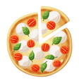 pizza top view cherry tomato mozarella vector image