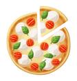 pizza top view cherry tomato mozzarella vector image