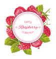 raspberry round banner vector image vector image