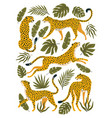 set leopards or cheetahs and tropical vector image vector image