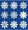 set white winter snowflak vector image